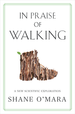 In Praise of Walking cover